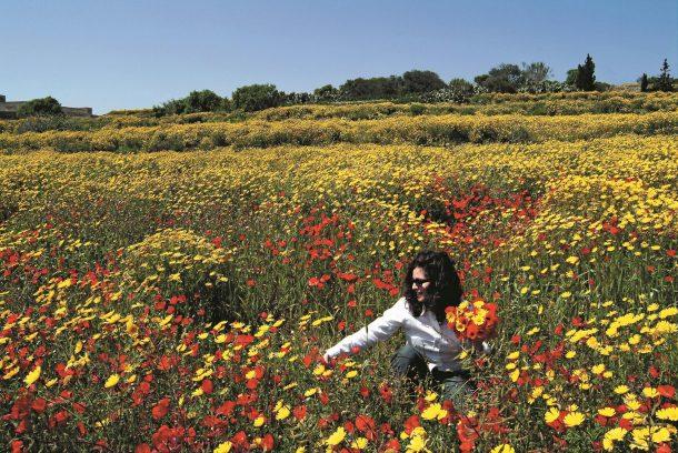 turismo sostenible en Malta. premios EDEN