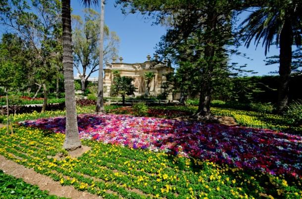 San Anton Gardens (28)